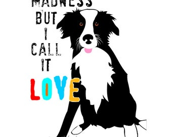 Border Collie Art Print Wall Decor