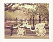 "New Orleans Jackson Square Wall Art ""Carriage Ride"" Fairy Tale, French Quarter  Photograph. Spring Affordable Home Decor."