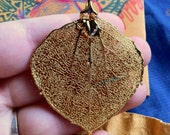 Real Birch Leaf Autumn Fall Necklace Pendant in Gold. Botany Science Jewelry.