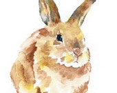Bunny Rabbit Watercolor Painting Giclee Print 5x7 Nursery Art