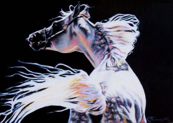 Arabian Horse Colors Horse Art Arabian Stallion