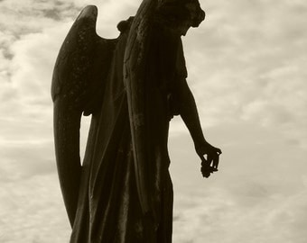 Sympathy in Shadow -  Angel Photograph