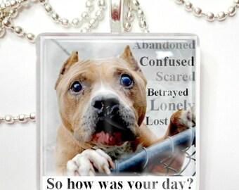 Abandoned Shelter Dog Awareness Glass Tile Pendant