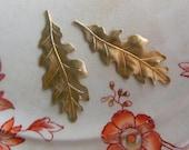 Oak Leaf Finding (2pc)