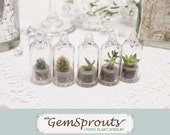 Holiday Sale - Wedding Favor / Reception GemSprout Gift Set - Free Shipping