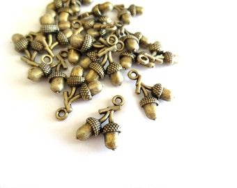 5 Pcs - Antique Brass Acorn Pendants / Charms
