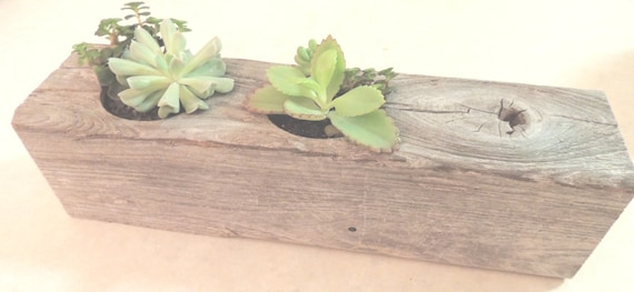 Reclaimed cypress rectangular succulent by lebrundesignsinc - Rectangular succulent planter ...