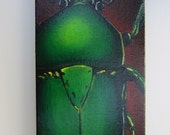 Original Canvas Acrylic Painting: Green Flower Beetle