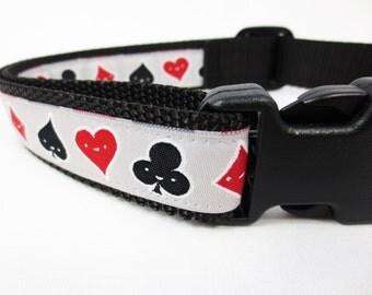 Medium Hold'Em Dog Collar