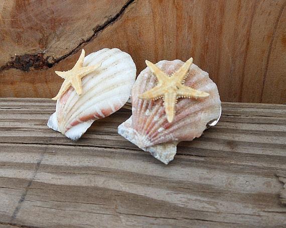 Starfish Hair Barrette - Scallop Seashells - Natural Shells - Handmade Hair Accessory - French Barrette