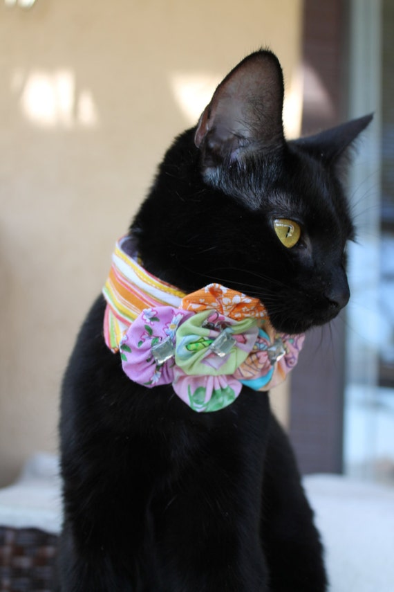 Orange Cat Collar Accessory with Yoyo Flowers and Bright Colors