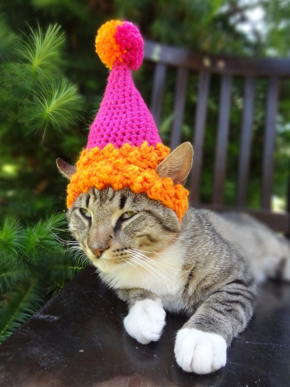 Preferred Pet Party Hat Birthday For Cats Cat RG19