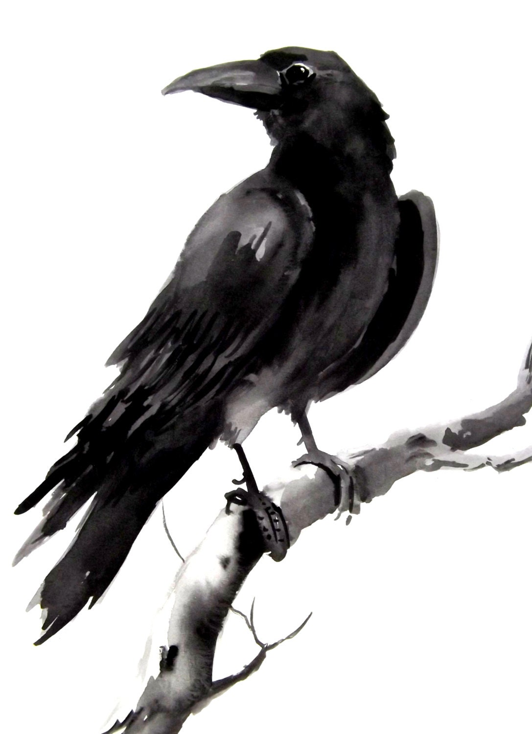 Crow raven original watercolor painting 9 X 12 by ORIGINALONLY