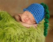 PATTERN Blueberry Hat - Fruit - Crochet