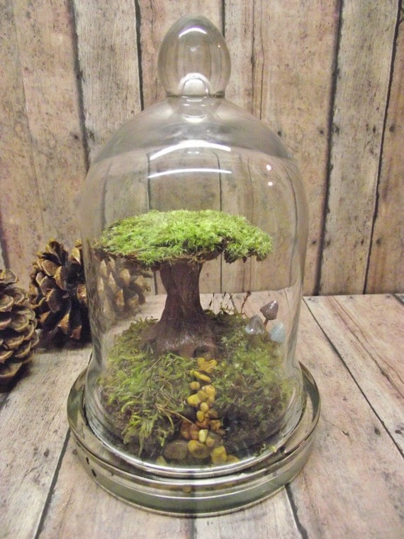 Tree of Life Terrarium Live Moss Raku Fired Tree in Bell Jar with Glow in the Dark Mushrooms- Handmade by Gypsy Raku