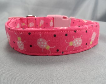 Hot Pink Ladybugs Dog Collar
