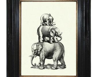 Elephants Art Print Pyramid Victorian Steampunk Natural History Art Print Zoo Circus Animals Surrealism