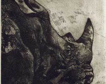 White Rhino etching