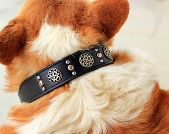 Leather Dog Collar // Celtic Cross and Spots