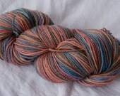 Handpainted Sock Yarn - Bamboo Wool Nylon - Dulcie and the Moa - Definitions of Aotearoa