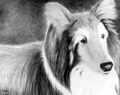 Custom Pet Portrait From Your Photo - 16x20 Original Pencil Drawing Cat Dog Horse Sketch Art From Picture