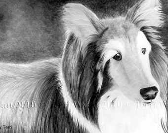 Custom Pet Portrait From Your Photo - Dog Cat or Horse - 8x10 Original Pencil Drawing Sketch From Photograph