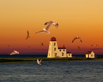 Cascumpec Lighthouse with Flying Gulls at Sunset on Prince Edward Island in Canada No.110 A Fine Art Lighthouse Seascape Photograph