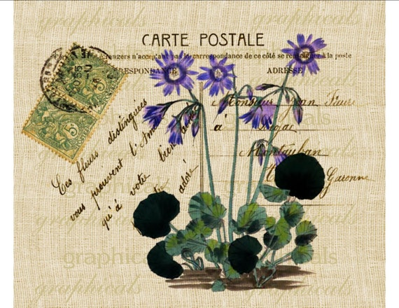 purple flower paris carte postale instant clip art digital download image for iron on fabric. Black Bedroom Furniture Sets. Home Design Ideas