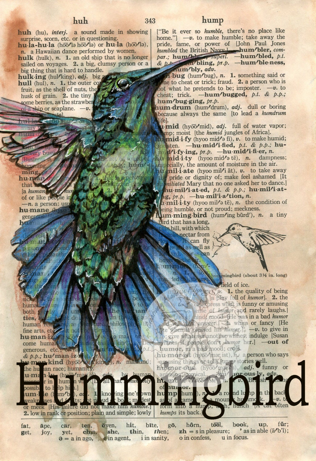 Hummingbird Drawings Step By Step: PRINT: Hummingbird Mixed Media Drawing On Distressed
