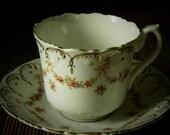 Vintage Tea Cup & Saucer Delphine Crown China