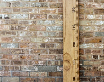 METRIC DIY Growth Chart Ruler Vinyl Decal Kit - Traditional style