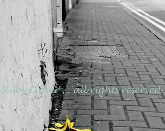 Banana Peel Photo, Waterford IRELAND, Sneaky Fruit Shenanigans, Irish Town, Street Scene, Slippery When Wet, Black White Yellow, Good Humor