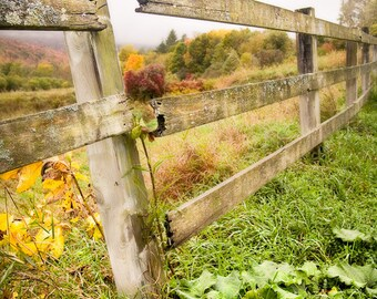 Broken Fence, Rustic, Autumn Landscape, Color Photograph, Free Shipping, Fine Art Photography Print.