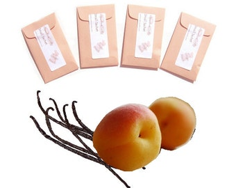 Apricot Vanilla Scented Sachets Fragrant Unique Candle Party Favors Mini Envelopes Seed Packet Homemade Fragrance Peach Pastel
