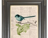 Aqua blue bird wall art print on dictionary or music page COUPON SALE Dictionary art print Sheet music Digital print Wall decor No. 525