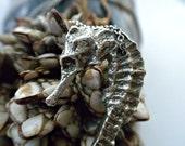 Seahorse .necklace