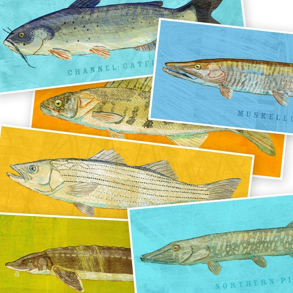 Unavailable listing on etsy for Big fish printing