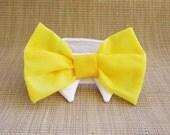 Wedding Bow Tie Dog or Cat : For Your Spring Wedding Lemon Zest