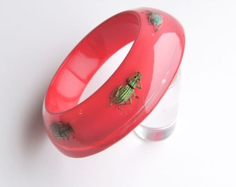 Red lucite bracelet with five exotic real insects