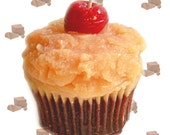 German Chocolate Cupcake Candle Chocolate Coconut Bakery Scent