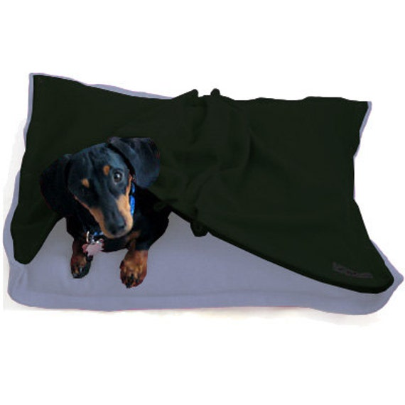 Eco Pet Bed  - Recycled Sky Blue and Forest Green Fleece
