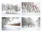 Winter Photography Set - Four 5x7 Photographs - Snow monochrome pale white nature wall art