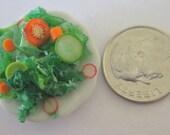 Dollhouse mini salad garden vegetable plate