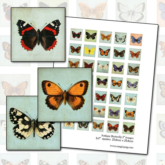 Antique Butterfly inchies digital collage sheet 1 inch square 25.4mm pale robins egg blue background 25mm x 25mm