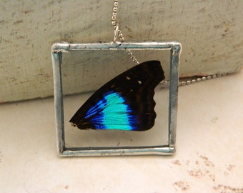 Real Butterfly Wing Soldered Necklace/Pendant-Rayne