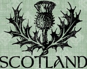 Digital Download Scotland Thistle, digi stamp, digital stamp, Antique Illustration, Scottish Icon, Digital Transfer, Typography
