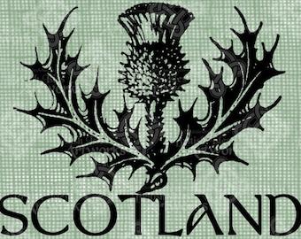 Digital Download Scotland Thistle, digi stamp, digital stamp, Antique Illustration, Scottish, Digital Transfer, Typography, transparent png