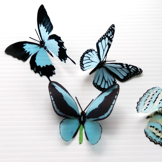 12 x 3D Butterflies in Baby Blue for Nursery or childrens Wall Decor