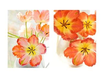 Orange Tulip Print Set,  Floral Still Life Photography, Floral Art Print, Tulip Wall Art, Orange Decor
