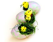 Painted Egg Gourds Spring Easter Eggs Set of 3 Chick Eggs Green Pink Speckled Spring Basket Filler Easter Basket Chicks Hatching Chick Eggs